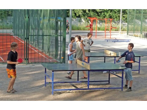 Lauko teniso stalas